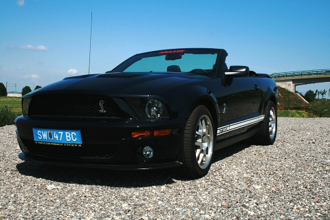 ford mustang shelby gt 500 cabrio ucpi eigenimport von. Black Bedroom Furniture Sets. Home Design Ideas